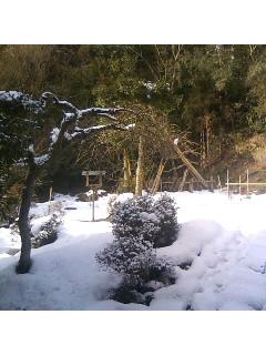 激寒!能登は大雪…。